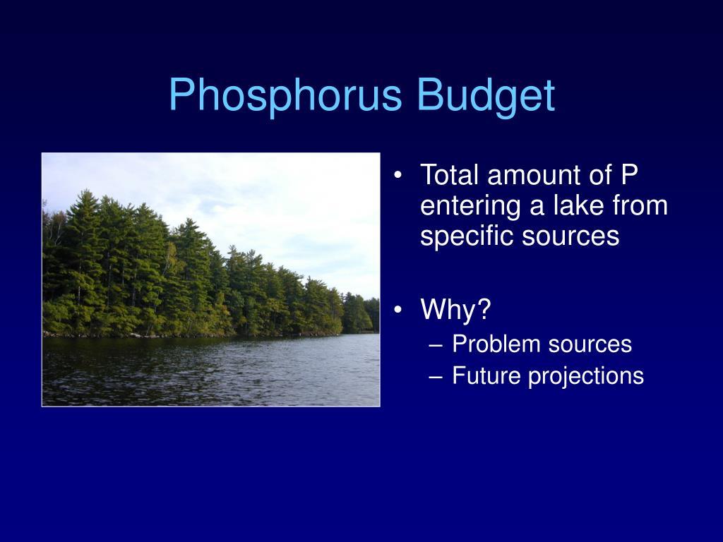 Phosphorus Budget