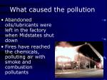 what caused the pollution