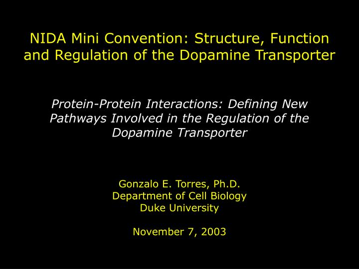 NIDA Mini Convention: Structure, Function and Regulation of the Dopamine Transporter