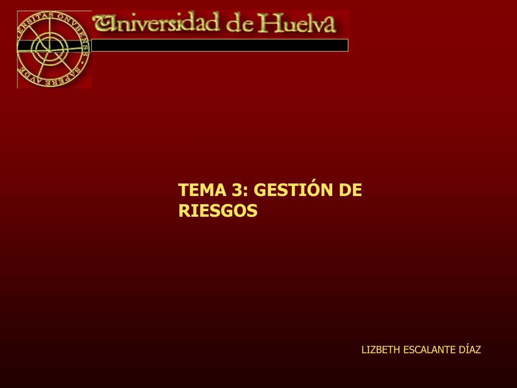 TEMA 3: GESTIÓN DE RIESGOS