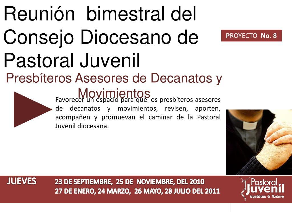 Reunión  bimestral del Consejo Diocesano de Pastoral Juvenil