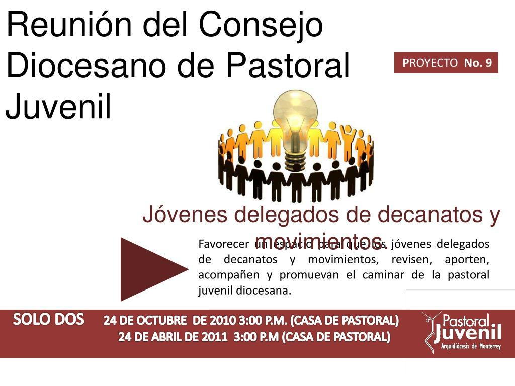 Reunión del Consejo Diocesano de Pastoral Juvenil