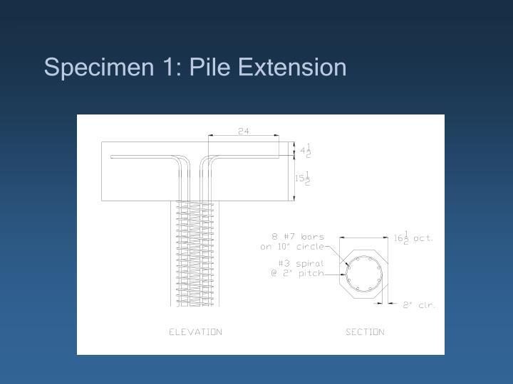 Specimen 1: Pile Extension