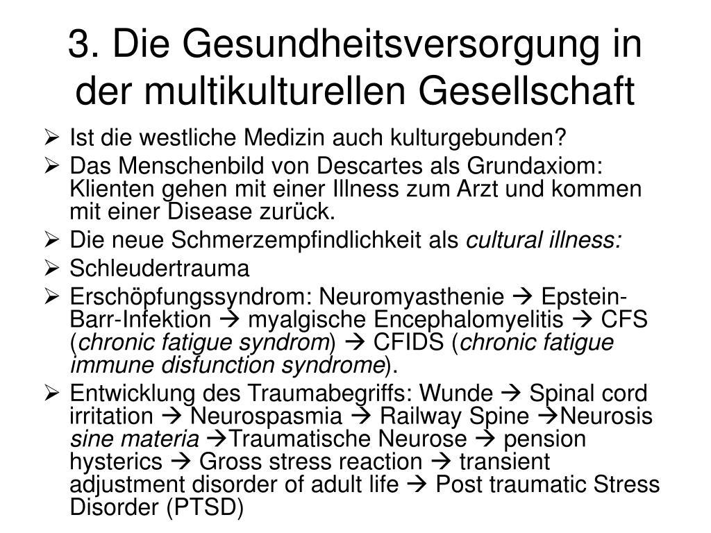 3. Die Gesundheitsversorgung in der multikulturellen Gesellschaft