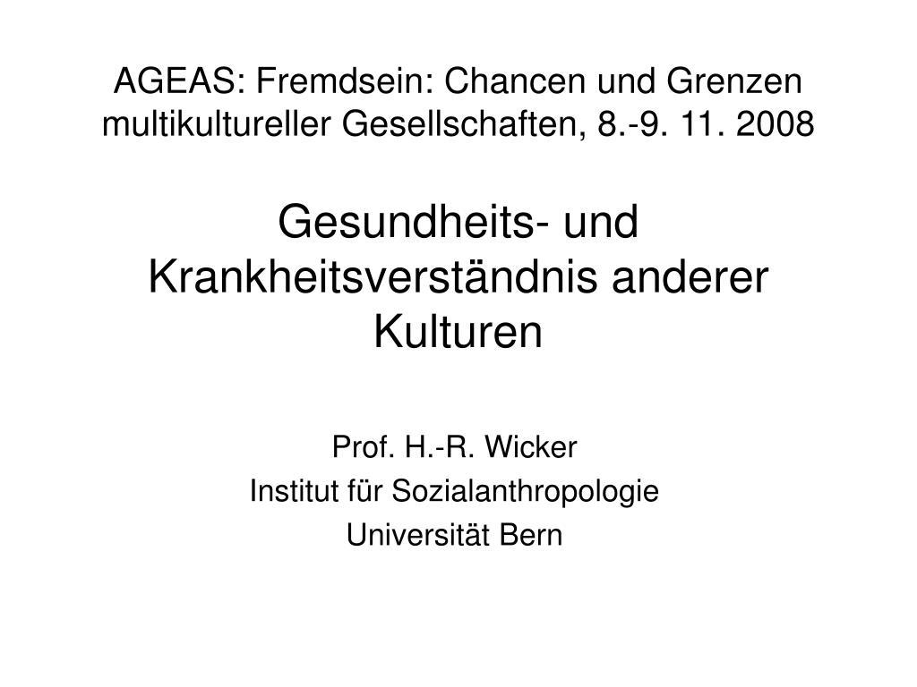 AGEAS: Fremdsein: Chancen und Grenzen multikultureller Gesellschaften, 8.-9. 11. 2008