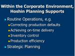 within the corporate environment hoshin planning supports