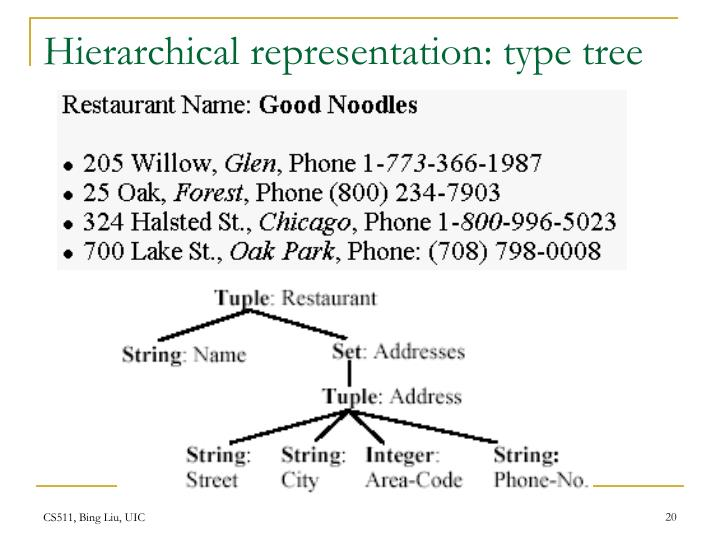 Hierarchical representation: type tree