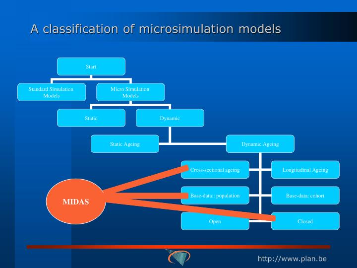 A classification of microsimulation models