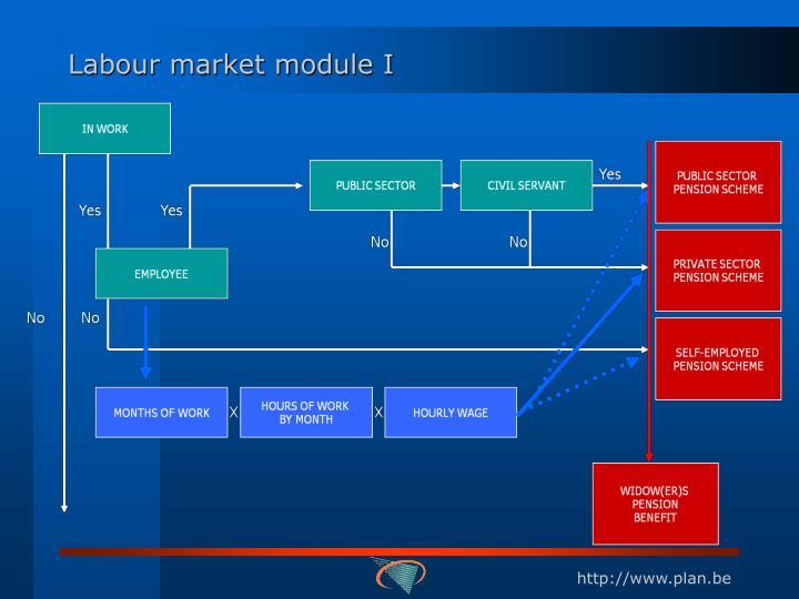 Labour market module I