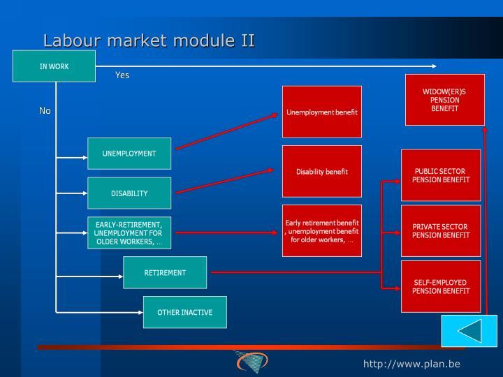 Labour market module II