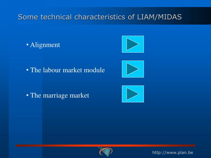 Some technical characteristics of LIAM/MIDAS
