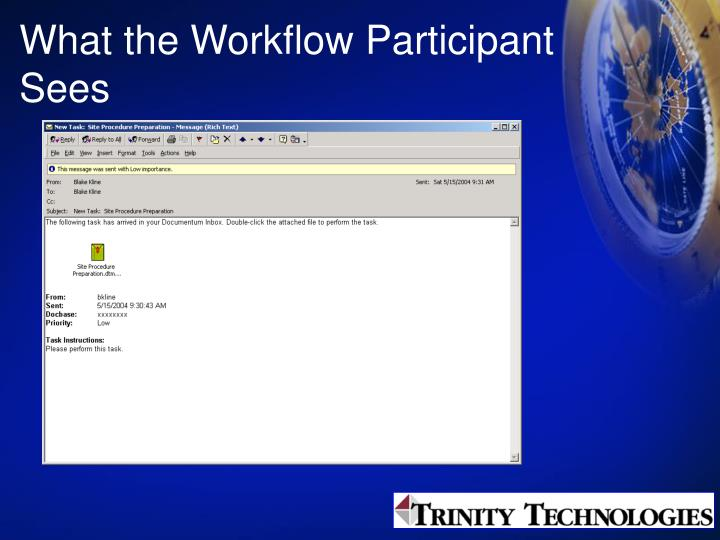 What the Workflow Participant Sees
