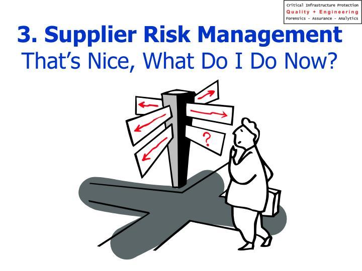 3. Supplier Risk Management