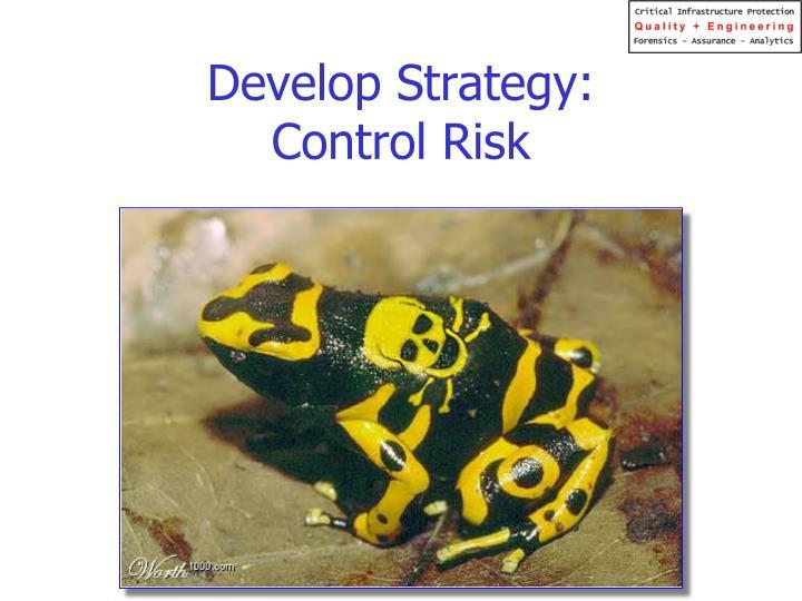 Develop Strategy: