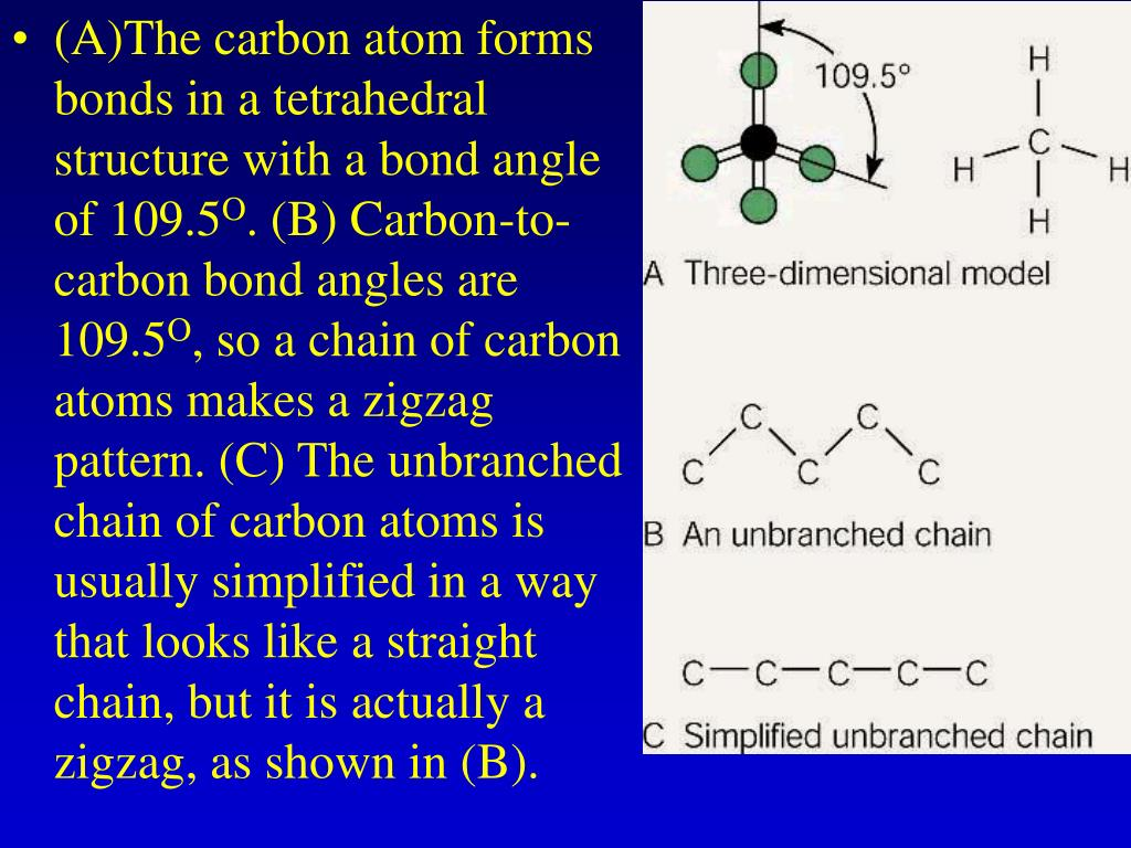 (A)The carbon atom forms bonds in a tetrahedral structure with a bond angle of 109.5