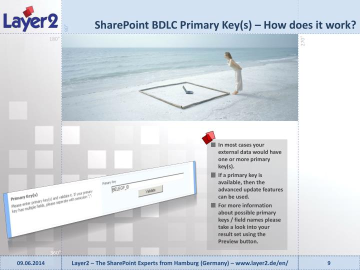 SharePoint BDLC Primary Key(s) –