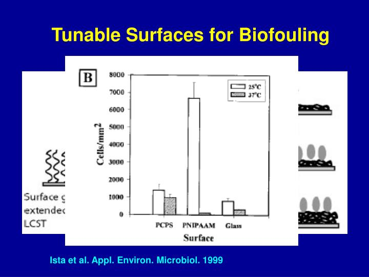Tunable Surfaces for Biofouling