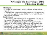 advantages and disadvantages of the international division