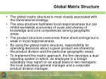 global matrix structure1