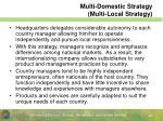 multi domestic strategy multi local strategy