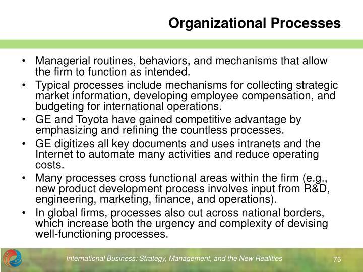 Organizational Processes