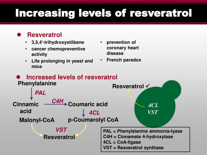 Increased levels of resveratrol