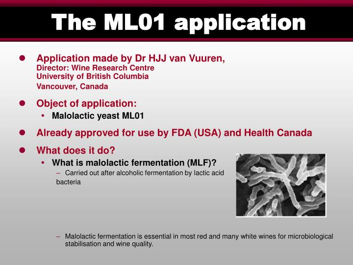 The ML01 application