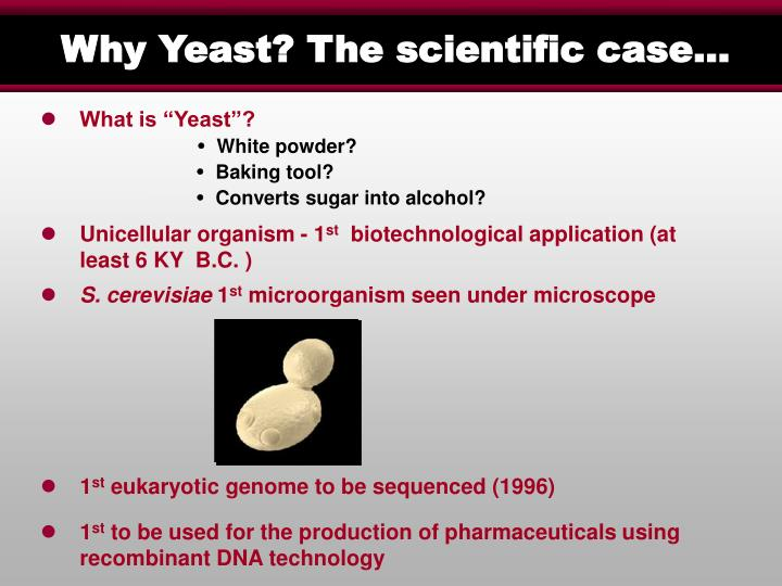 Why Yeast? The scientific case…