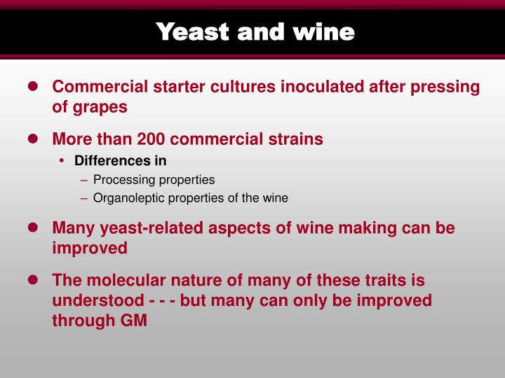 Yeast and wine
