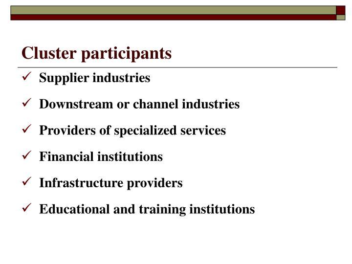 Cluster participants