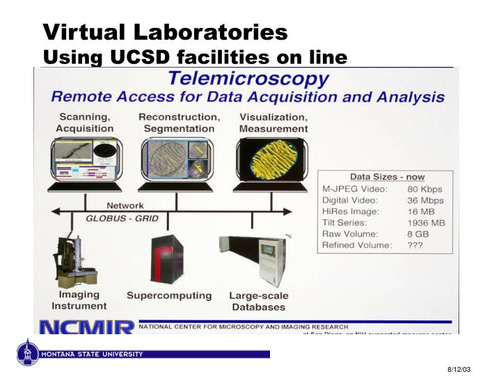 Virtual Laboratories
