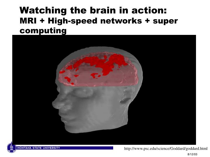 Watching the brain in action: