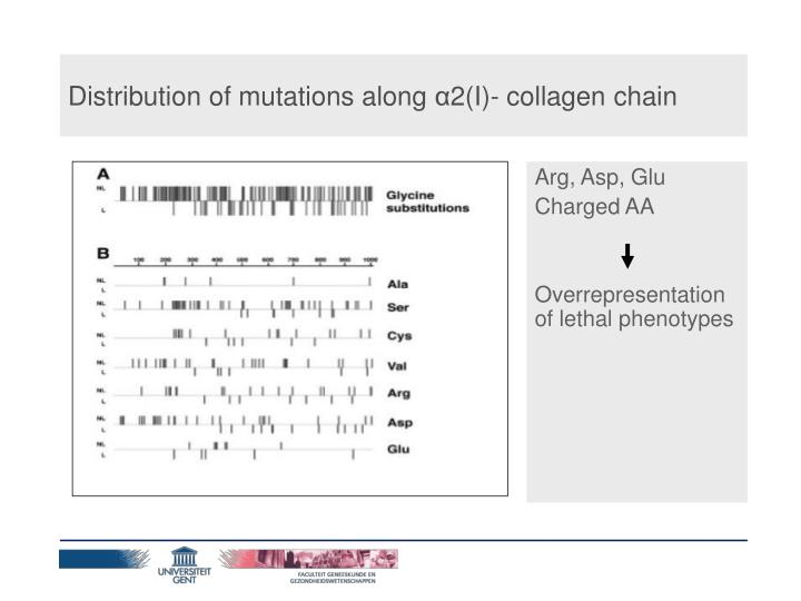 Distribution of mutations along