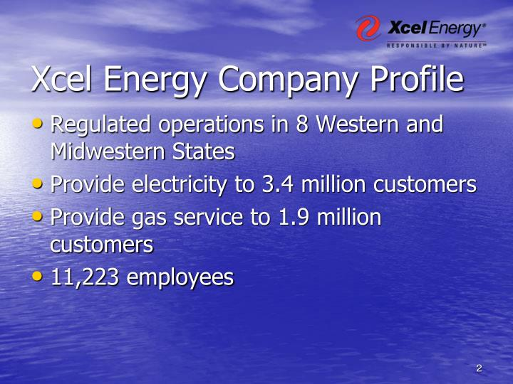 Xcel energy company profile