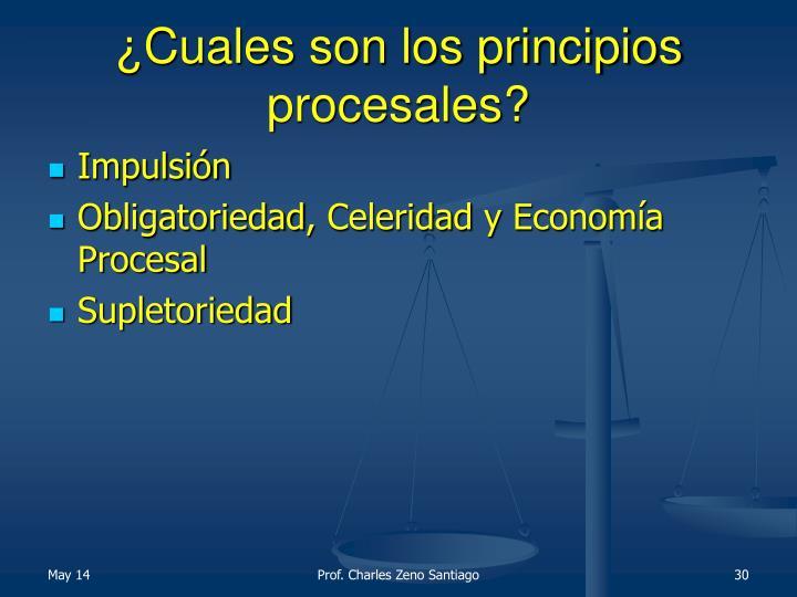 ¿Cuales son los principios procesales?