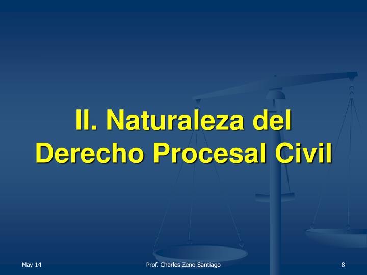 II. Naturaleza del Derecho Procesal Civil