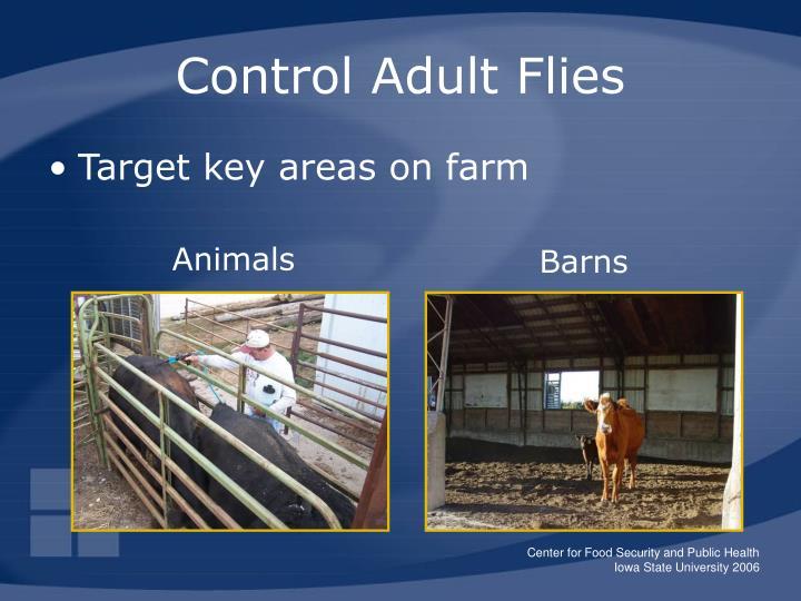 Target key areas on farm