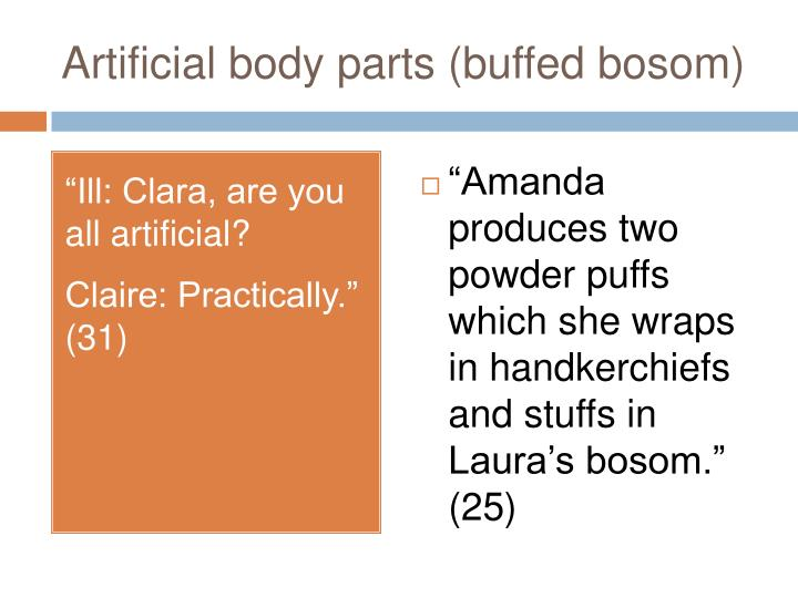 Artificial body parts (buffed bosom)