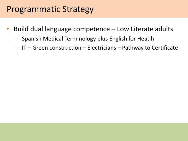 Programmatic Strategy