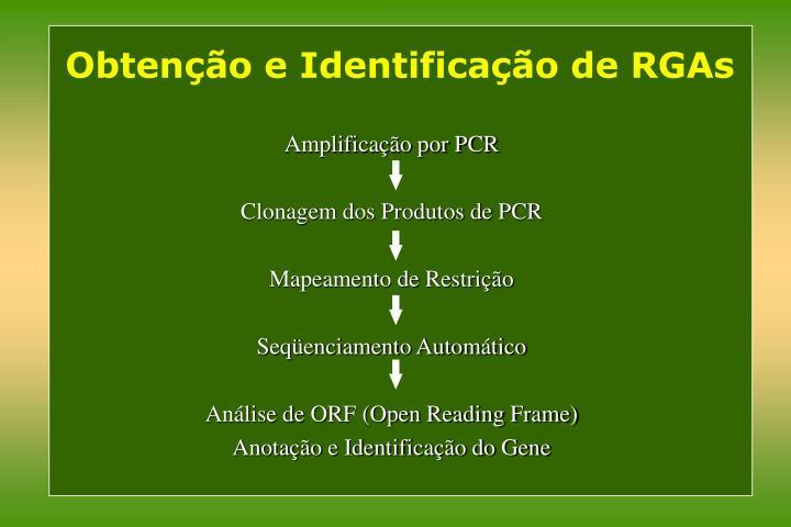 Obtenção e Identificação de RGAs