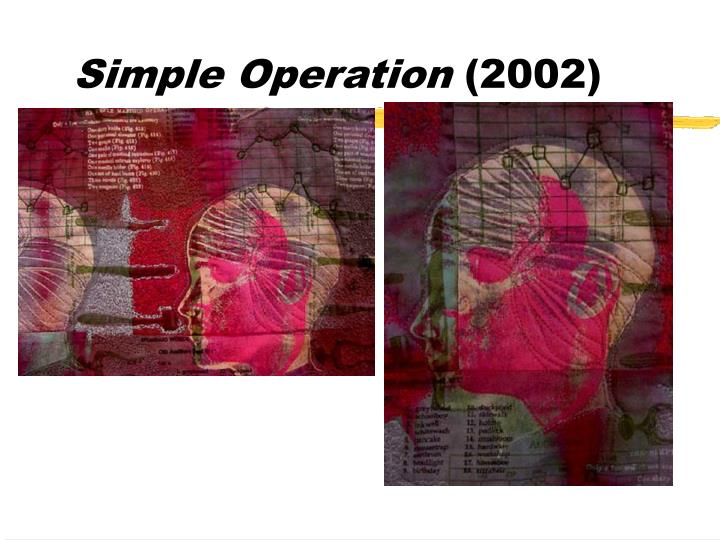 Simple operation 2002