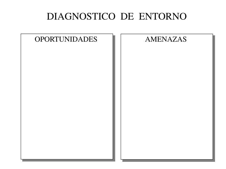 DIAGNOSTICO  DE  ENTORNO