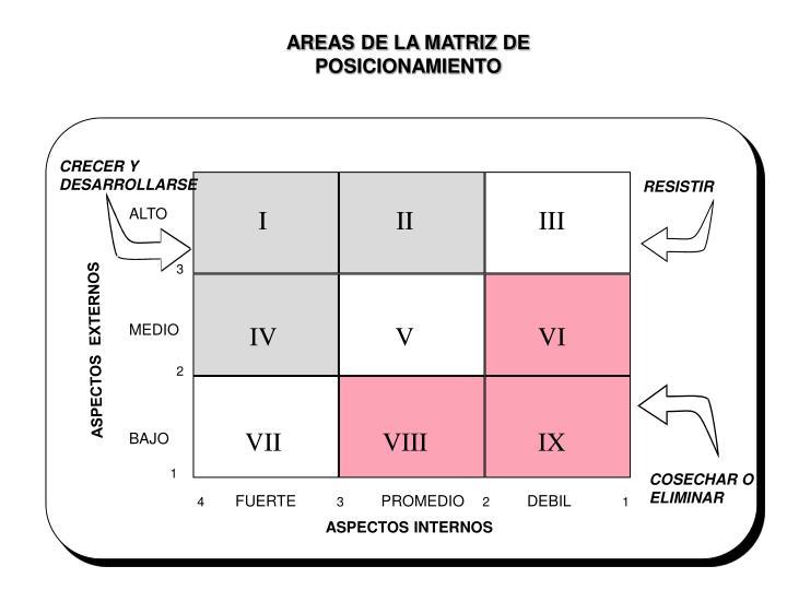 AREAS DE LA MATRIZ DE POSICIONAMIENTO
