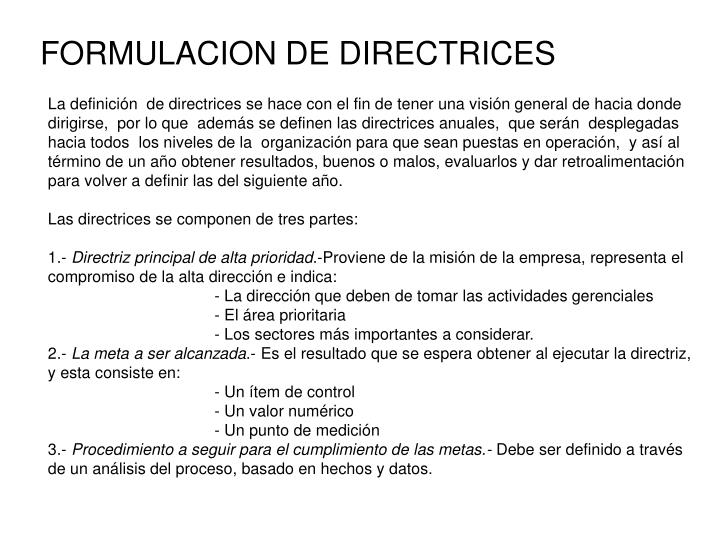 FORMULACION DE DIRECTRICES