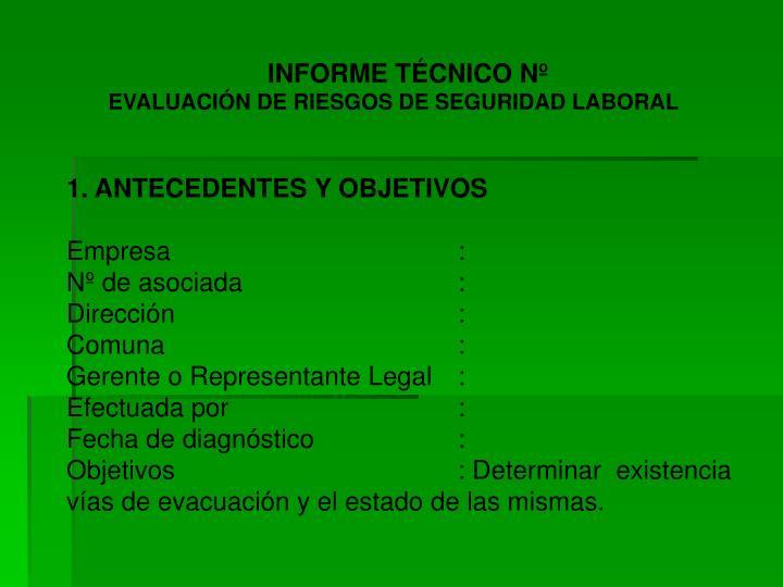INFORME TÉCNICO Nº