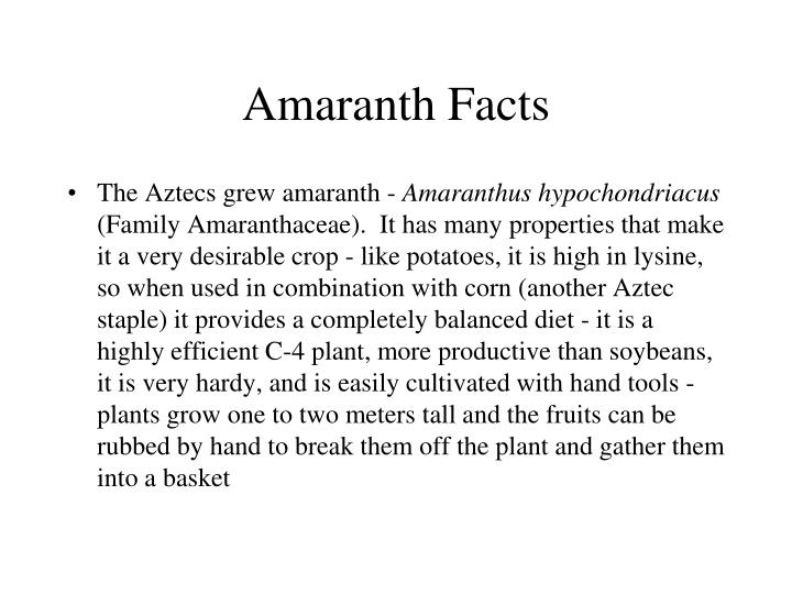Amaranth Facts