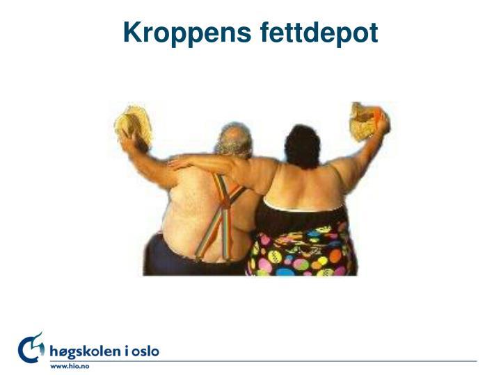 Kroppens fettdepot