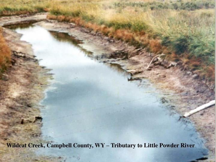Wildcat Creek, Campbell County, WY – Tributary to Little Powder River