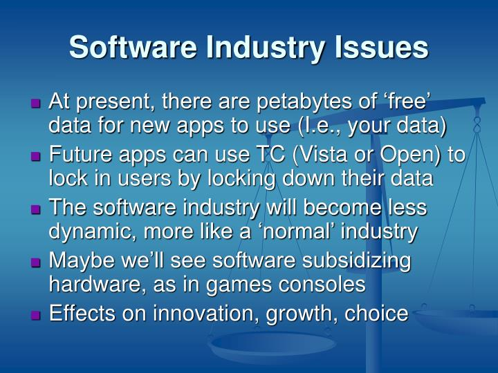 Software Industry Issues