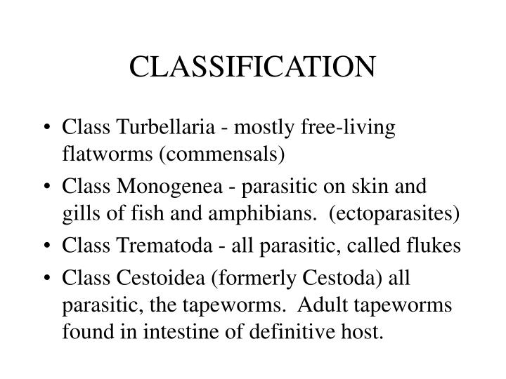 Classification1